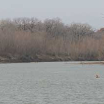 Texas farmers relieved as priority call lifted in Brazos River Basin