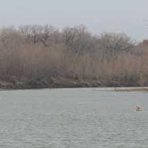 Farm Bureau wins Brazos water rights case